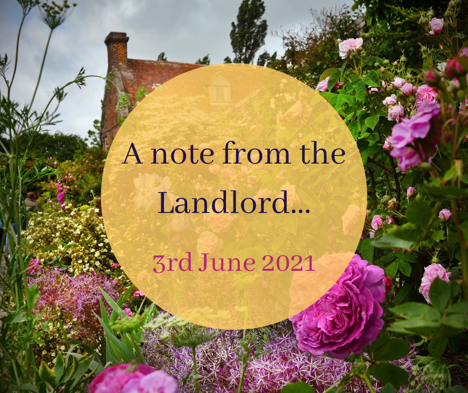 A summery June update…